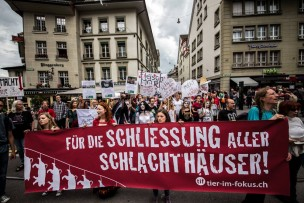 schlachthaus_03